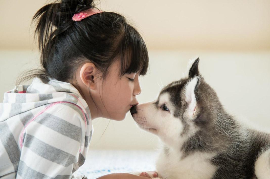 ¿Llamas churri, corazón o amor a tu perro? ¡Son mensajes que entiende!