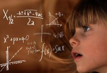 La fórmula definitiva de como calcular la edad de un perro