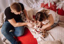 Cuidar en exceso nuestras mascotas