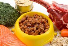 ¿Qué es la dieta BARF o ACBA para perros o gatos?