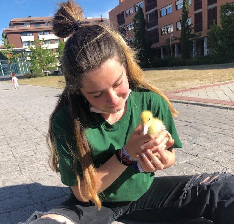 Cuidar un pato